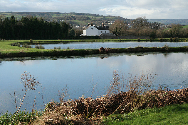 Axmouth: Lower Bruckland Trout Fishery