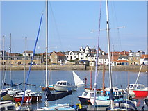 NT4999 : Elie Harbour - boats and a windsurfer by Sandy Gemmill