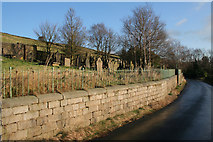 SE0328 : Throstle Bower Graveyard by Mark Anderson
