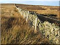 NZ0442 : Boundary wall and fence, Wolsingham Park Moor by Oliver Dixon