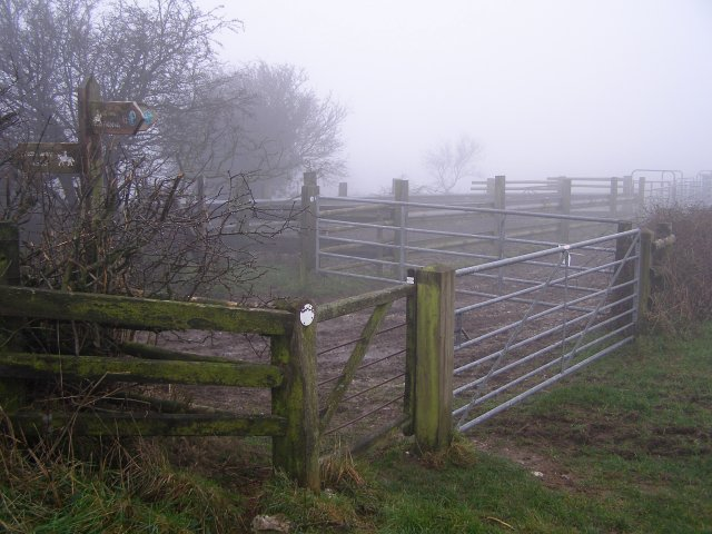 Gates on Giant Hill