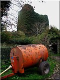 R6650 : Carrigarreely Castle by Liam