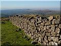 SX5580 : Dry stone wall, Wapsworthy Common by Derek Harper