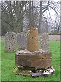 ST6601 : Preaching cross at Cerne Abbas burial ground by Jim Champion