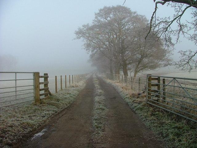 Track to Tullielarach Farm