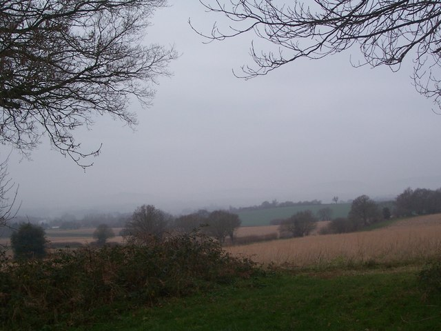 View from end of Durford Wood over to misty South Downs