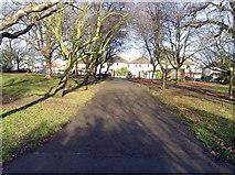 TQ3095 : Oakwood Park towards Prince George Avenue, London N14 by John Salmon