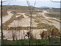 SO9906 : Daglingworth Quarry by Catherine Collins