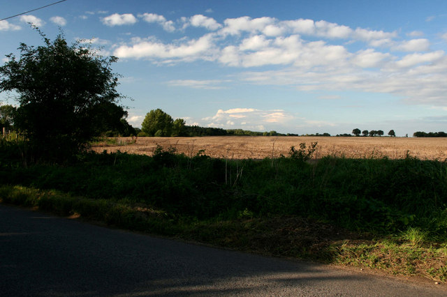 Norfolk Farmland
