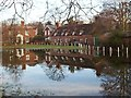 TR2157 : Littlebourne village green -not a pond but floodwater. by Nick Smith