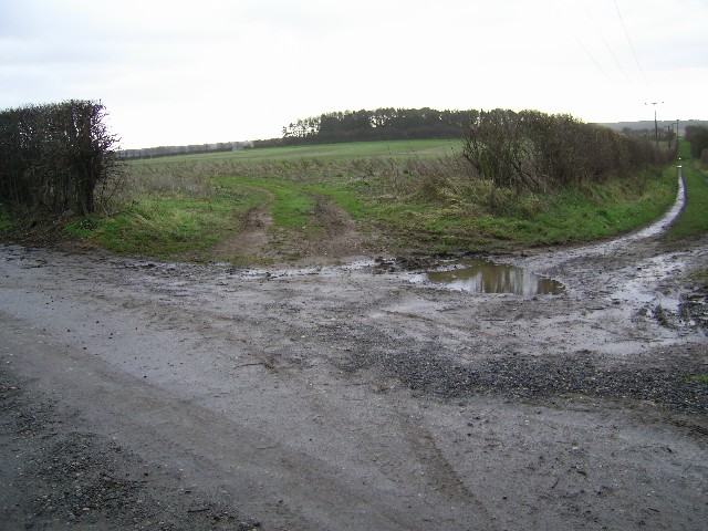 Farmland near Cuckney