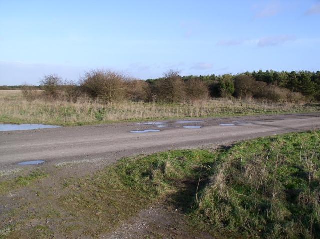 One of the many tracks that cross Salisbury Plain
