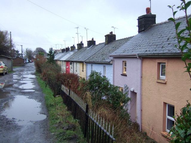 The Terrace, Rosebush