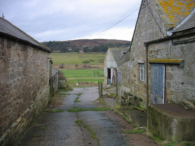 Carterside Farm, looking towards Rothbury Golf Course