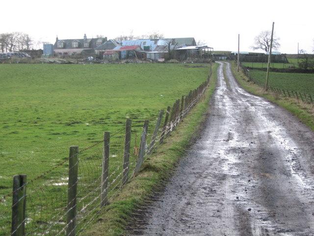 Mountop Farm