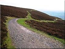SJ1561 : Offa's Dyke Path by John S Turner