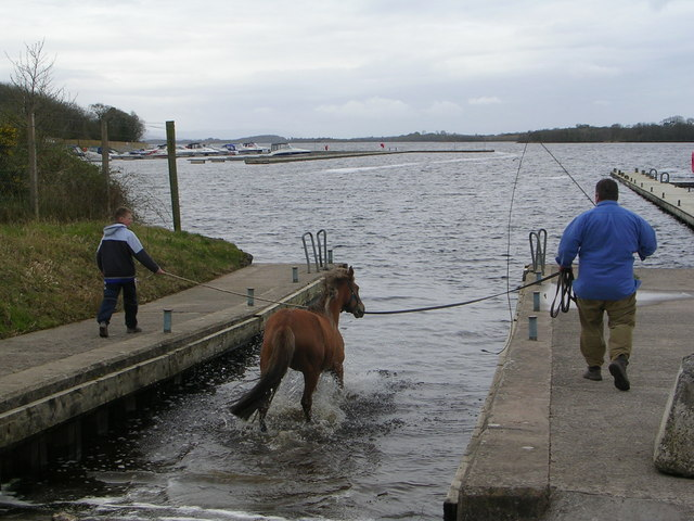 Horsey Swimming Lessons