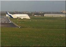 SJ3464 : Hawarden Airport and the Airbus Beluga #1 by John S Turner
