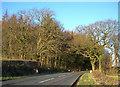 NS3216 : Halfway Bridge by Mary and Angus Hogg