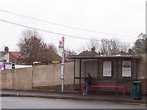 TQ1684 : 245 Bus Stop - Sudbury Town Station by Russell Trebor