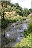 SK1357 : The River Dove in Wolfscote Dale by Philip Halling