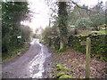 SD3685 : Public Bridleway by Michael Graham