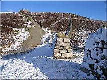 SJ1662 : Offas Dyke Path below Moel Famau by John S Turner