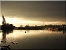SX9291 : River Exe at Trew's Weir by Derek Harper