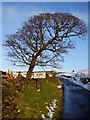 SK0267 : Entering Flash highest village in Britain 1518ft by Ken Brockway