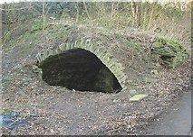 SE1421 : Vaulted cellar, Shepherds Thorn Lane, Rastrick by Humphrey Bolton