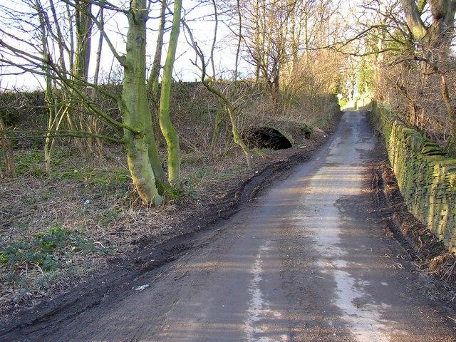 Site of Throstle Nest (?), Shepherds Thorn Lane, Rastrick