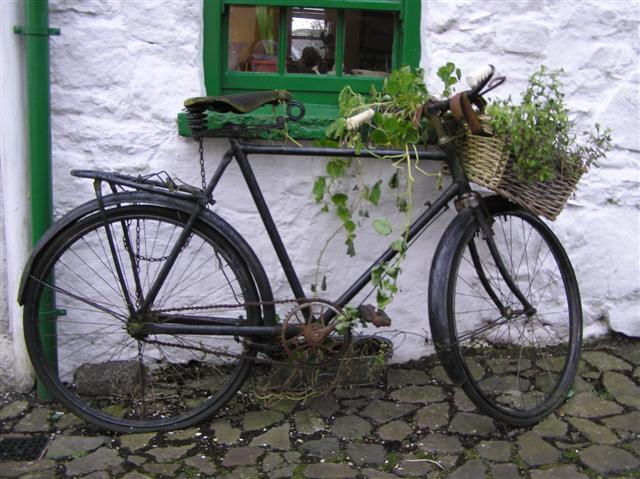 Old bike at Gleno