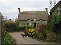 ST5707 : Monmouth Cottage, Melbury Osmond by Rupert Fleetingly