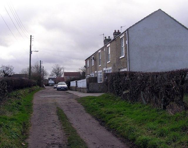 Primrose Hill : Etherley Dene