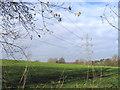 TQ6767 : Electricity Pylons, Cobhambury by Stephen Craven