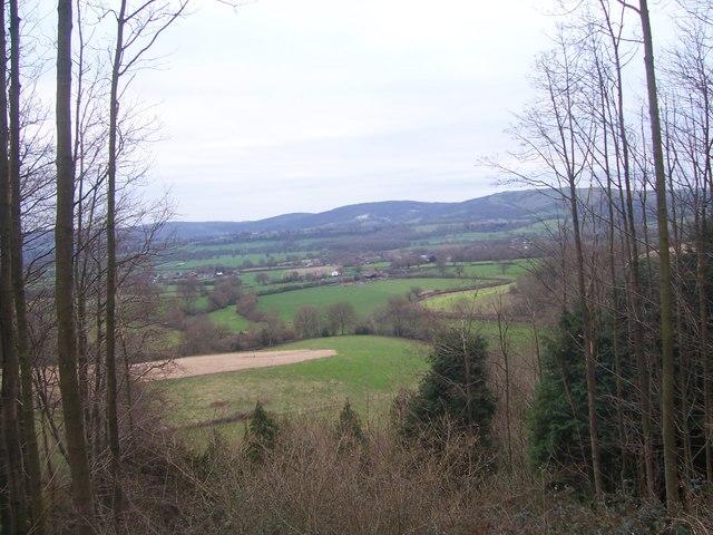 Farmland at Stroud from bridlepath up Lythe Hanger