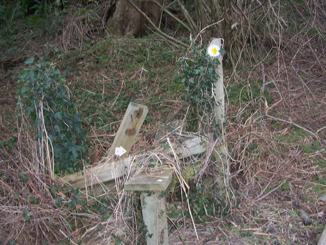 Broken stile, on path out of copse before Rothercombe Farm