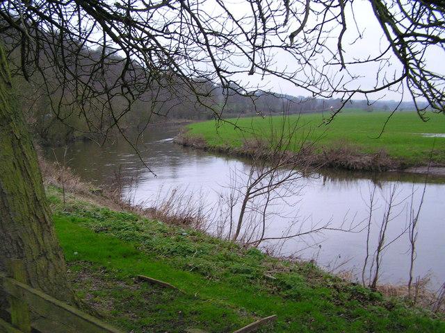 River Trent approaching Wolseley Bridge looking West
