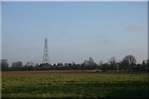 TL9853 : Disused mast at Cross Green by Bob Jones