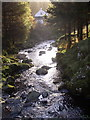 NT8712 : Fairhaugh, Usway Burn Valley, Upper Coquet Dale by Kenneth   Ross