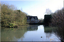 TQ6056 : Basted Mill Pond by Robin Webster