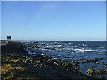 NJ9567 : rocks near Pitullie shore by Ken Fitlike