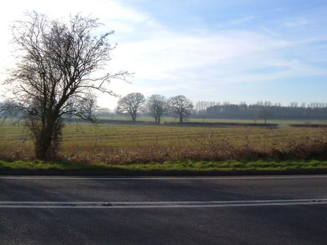 Farmland next to A41