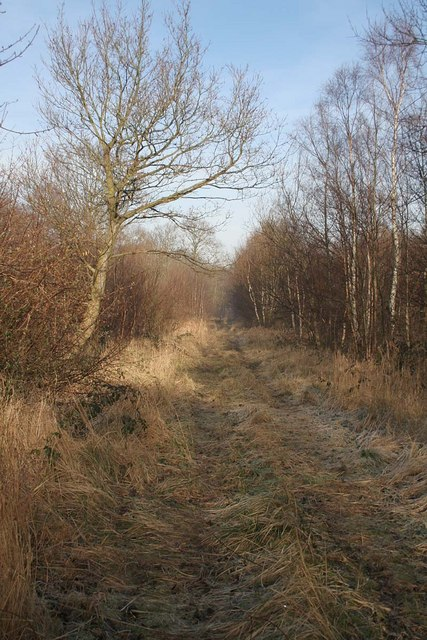 A ride in Newball Wood