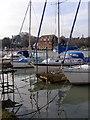 SU4603 : Boats moored at Ashlett Creek by Jim Champion