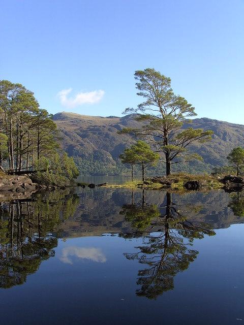 Eilean Ruairidh Mor, Loch Maree