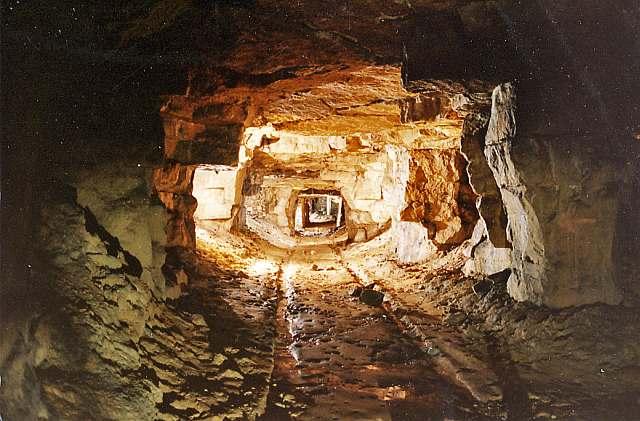 Firs Quarry