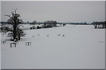 SO8843 : Croome Park in snow by Philip Halling