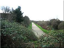 TQ3785 : Eastway Cycle Circuit Jan 2007 by Rachel Bowles