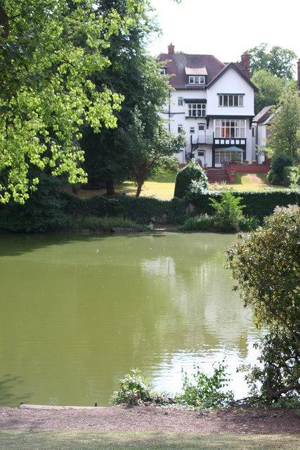 Moseley Park, Pond